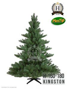 NEU Spritzguss Weihnachtsbaum Nordmanntanne Kingston ca. 180cm